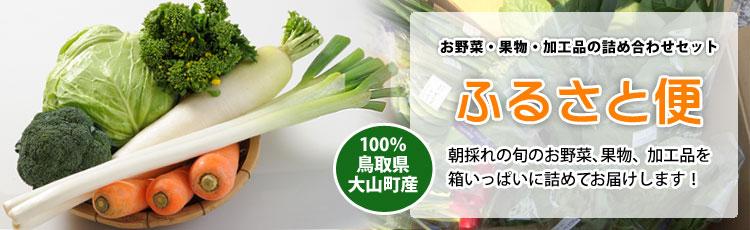 ふるさと便 新鮮な大山町産の旬野菜や果物、加工品を箱いっぱいに詰めました。