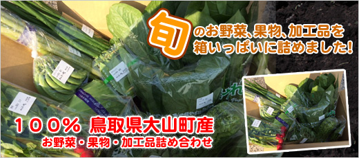 鳥取,鳥取県,大山,通販,野菜,産地直送,旬野菜,朝採れ,新鮮,ふるさと便,西日本,大山恵みの里,