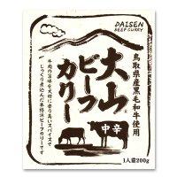 大山 ビーフカリー中辛(レトルト)1食入り