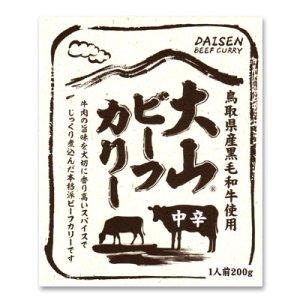 画像1: 大山 ビーフカリー中辛(レトルト)1食入り