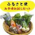 画像1: ふるさと便 お手頃お試しセット 新鮮な大山町産の旬野菜や果物、加工品をお手軽価格でお届けします。 (1)