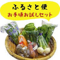 ふるさと便 お手頃お試しセット 新鮮な大山町産の旬野菜や果物、加工品をお手軽価格でお届けします。