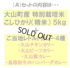 画像2: ◆学生さん・単身さん応援![Aセット]◆お米5kg と レトルトカレー4種のセット【税・送料込み】