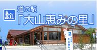 道の駅 大山恵みの里 案内webサイト