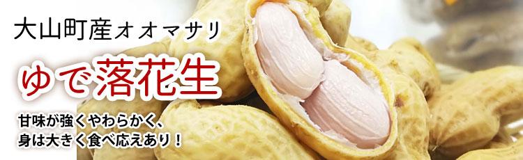 大山町産オオマサリ「ゆで落花生(冷凍)」